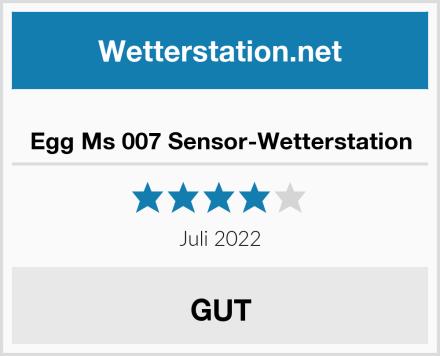 Egg Ms 007 Sensor-Wetterstation Test